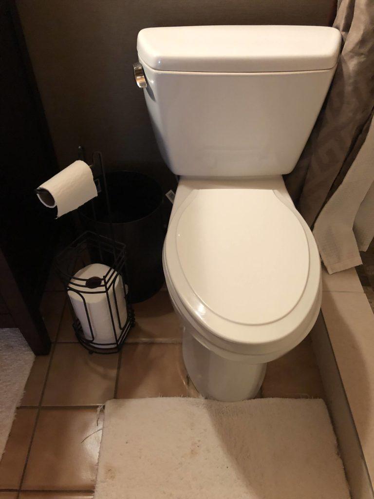 ミニマリスト女性・たえさんのトイレ